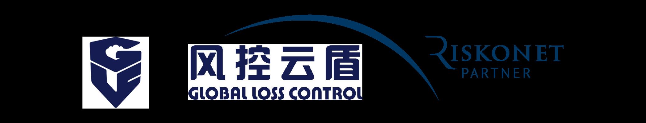 Global Loss Control